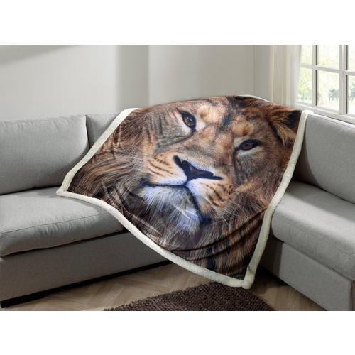 Plaid Lion