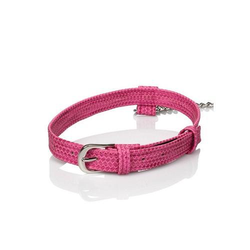 Collar met leiband Tickle Me Pink