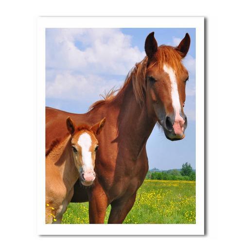 Dekbedovertrekset DAY DREAM Horses