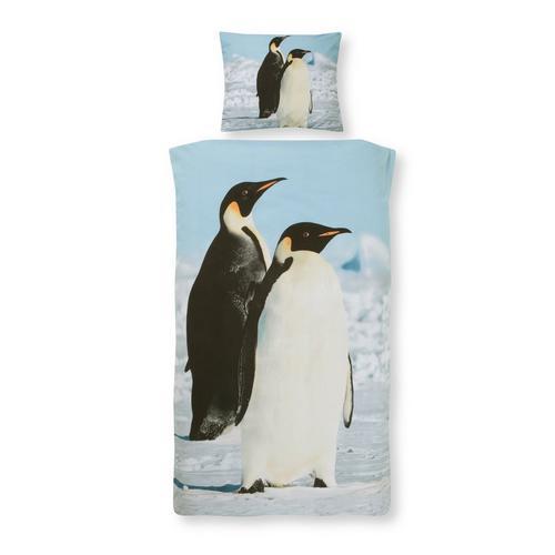 Parure housse de couette DAY DREAM Penguins