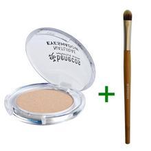 Set mono oogschaduw + borstel BENECOS