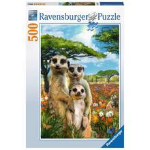 Puzzle Famille de suricates RAVENSBURGER