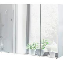SCHILDMEYER armoire à miroir Basic, Largeur 100 cm