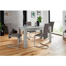 HOMEXPERTS ensemble de salle à manger Nick3-Mulan, lot 5, avec 4 chaises, table en béton, largeur 140 cm